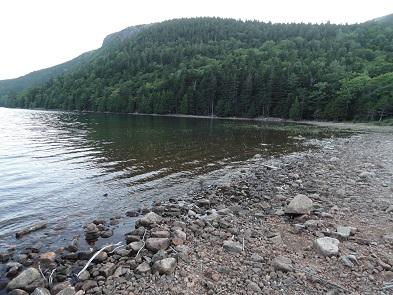 lake295